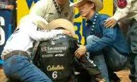 Wypadek na rodeo
