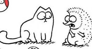 Kot Simona - jeż
