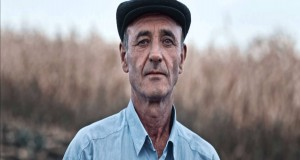 Show must go on - owoce z Mołdawii