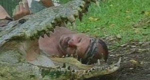 Człowiek i krokodyl