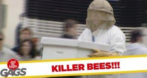 Ukryta kamera - pszczelarz