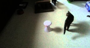 Automatyczny laser do zabawy z kotem