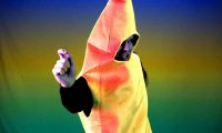 Bananowa piosenka