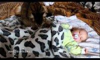 Kot usypia niemowlaka po czym sam zasypia