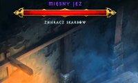Gość specjalny w Diablo 3