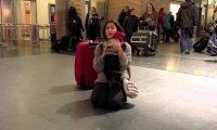 Pies wita panią na lotnisku, po 5 dniowej rozłące