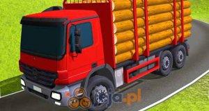 Indyjska ciężarówka