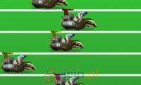 Wyścigi borsuków
