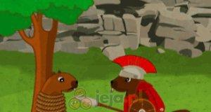Bitwy bobrów