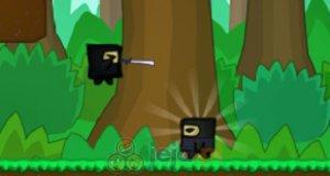 Ninja z ukrytej doliny