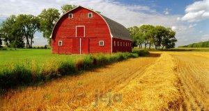 Farmer idle