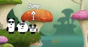 3 pandy w krainie fantasy