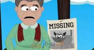 Gdzie jest mój kot?