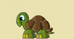 Latający żółw