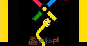 Kolorowy wąż