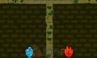 FireBoy & WaterGirl 3: In The Forest Temple