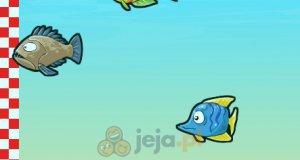 Rybie wyścigi
