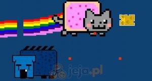 Nyan - kocia gorączka
