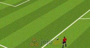 Rzuty wolne Euro 2012