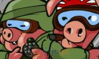 Świnie kamikaze