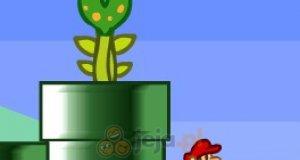 Bracia Mario