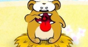 Głodny niedźwiadek