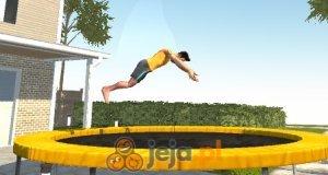 Mistrz trampoliny