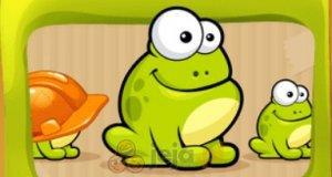 Kliknij żabę!