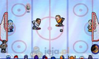 Hokejowa furia