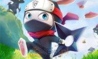 Królik ninja