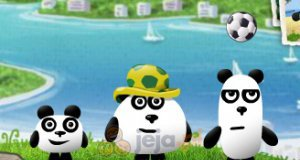 Trzy pandy w Brazylii