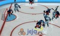 Mistrzowie hockeya
