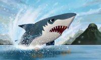 Show z rekinami