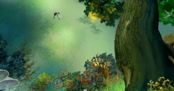 Skoczny pająk