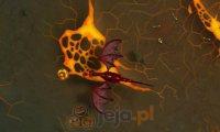 Ognisty smok 2