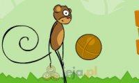 Małpa z piłką