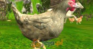 Strzelaj do kurczaków