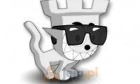 Zamkowy kotek 4