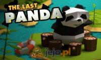 Ostatnia panda