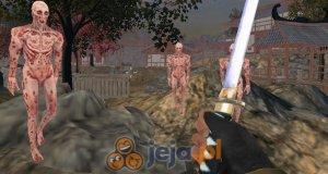 Wojownik vs zombie