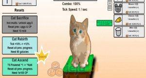 Koci klikacz