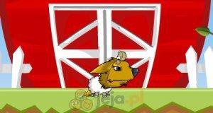 Wilk w skórze owcy