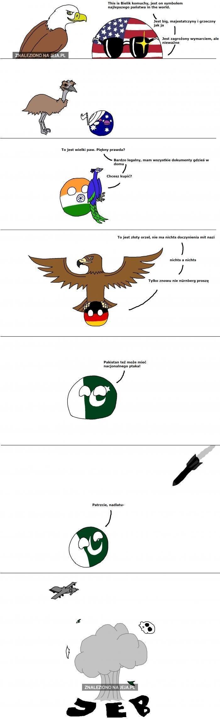 Zdjęcie użytkownika Kurczak_Z_Jajka w temacie Memy i komiksy o Countryballach