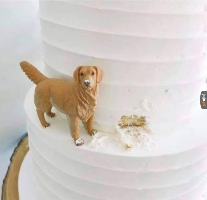 Idealna dekoracja tortu