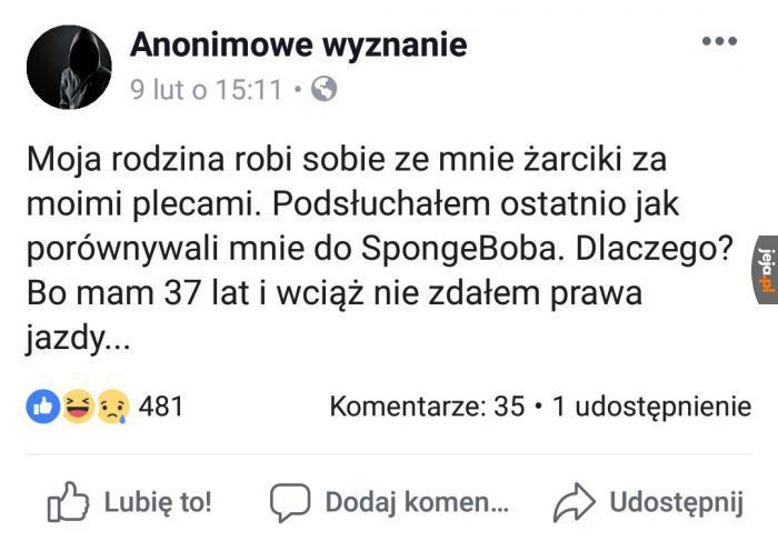 Nie bądź jak SpongeBob, zdaj prawko!