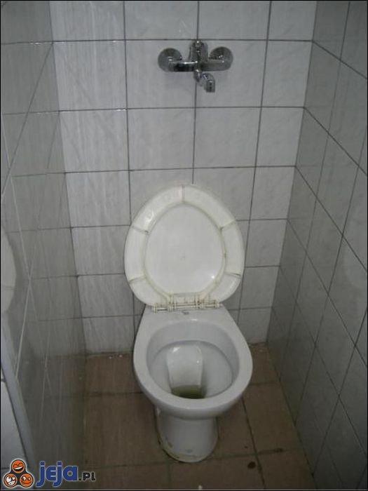 Toaletowe 2 w 1