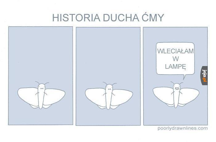 Historia ducha ćmy