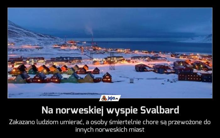 Na norweskiej wyspie Svalbard