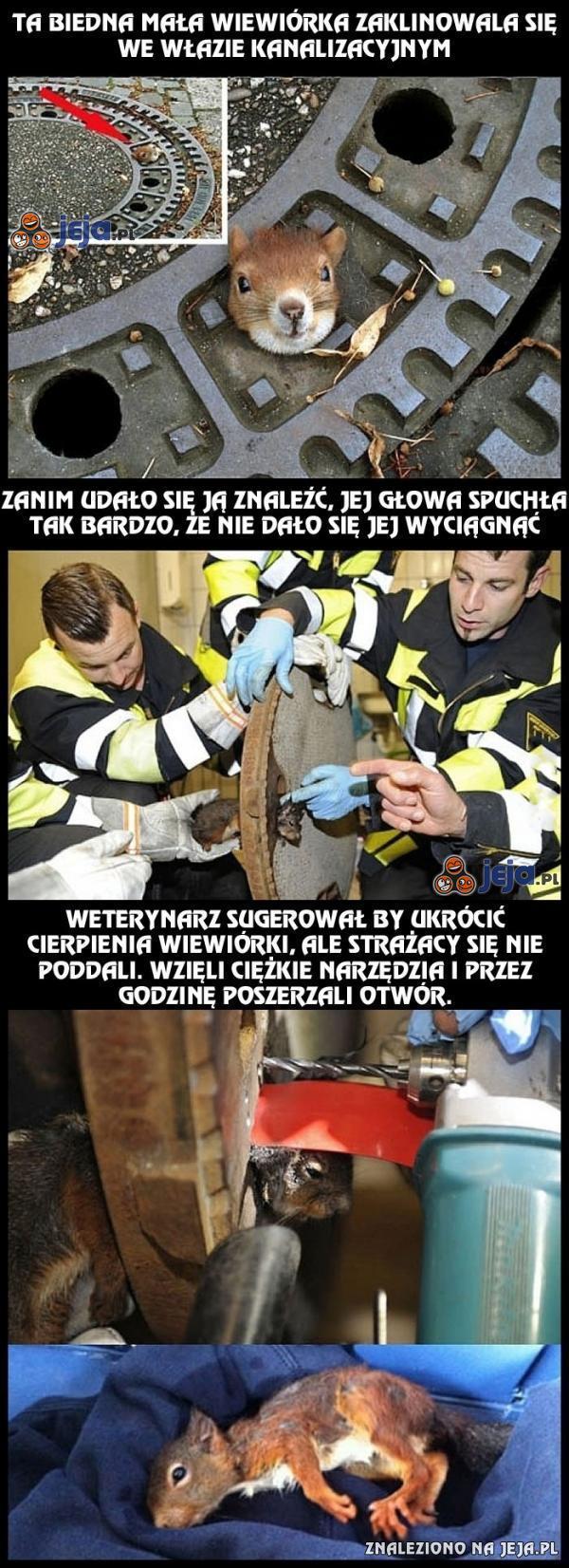 Warto jest ratować każde życie