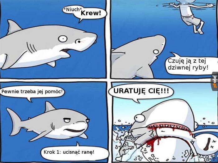 Rekin Ratownik